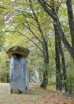 stonetrees